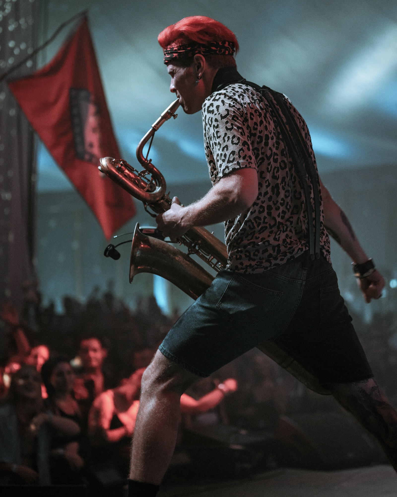 Too Many Zooz - Photo by Chris Taylor