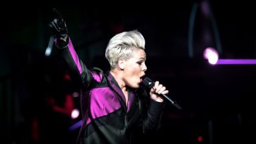 Pink, P!nk, Xcel, Music In Minnesota, Pop,