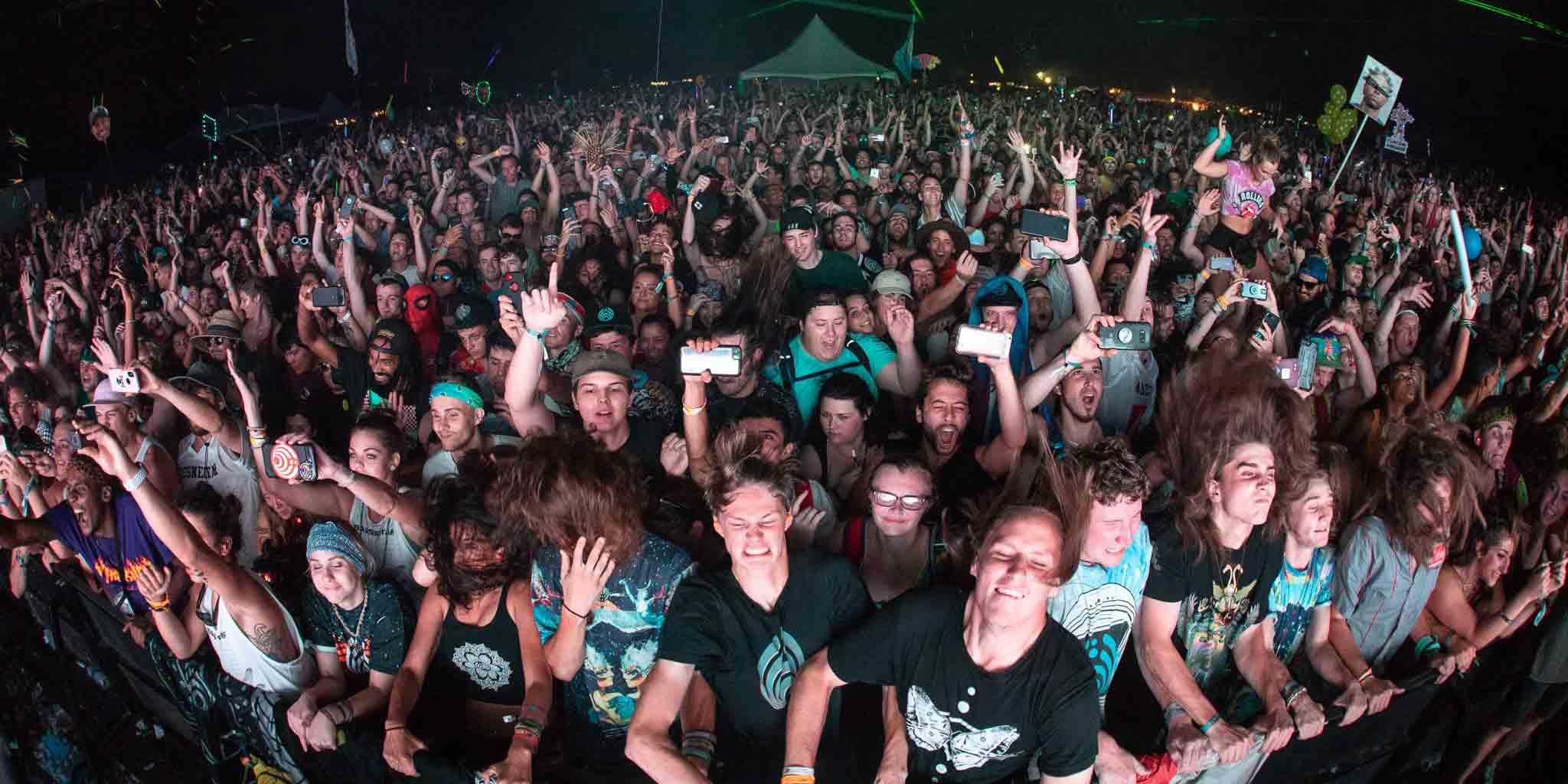 Music Festival Crowd of Fans